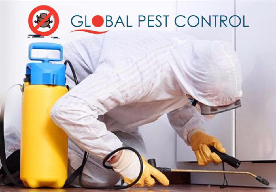 global pest control